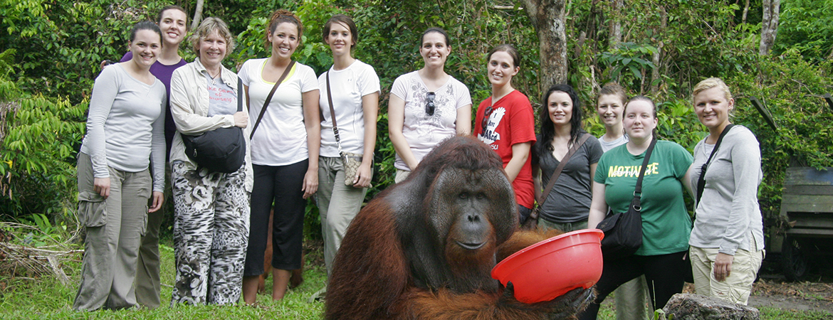 Study abroad students with gorilla