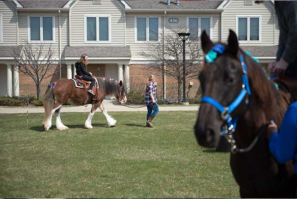 students riding horses at animal petting zoo at the UVs