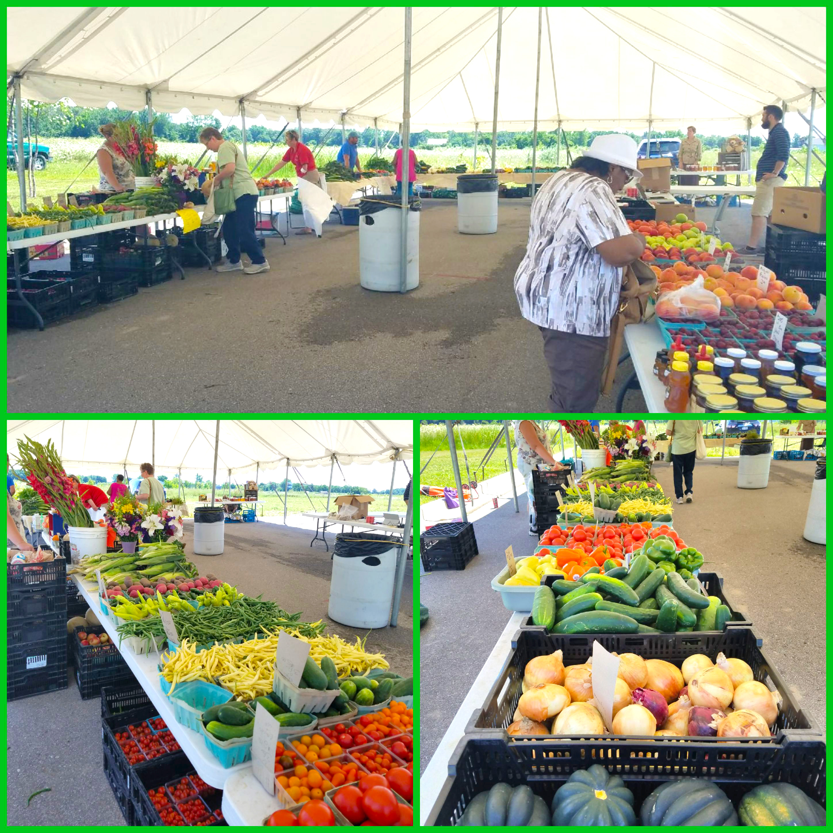Tables of fresh produce: corn, tomatoes, broccoli.