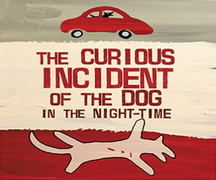 Flyer image from Curious Incident production