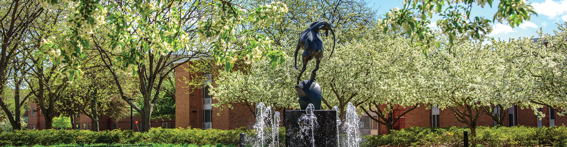 Campus courtyard, fountain and statue