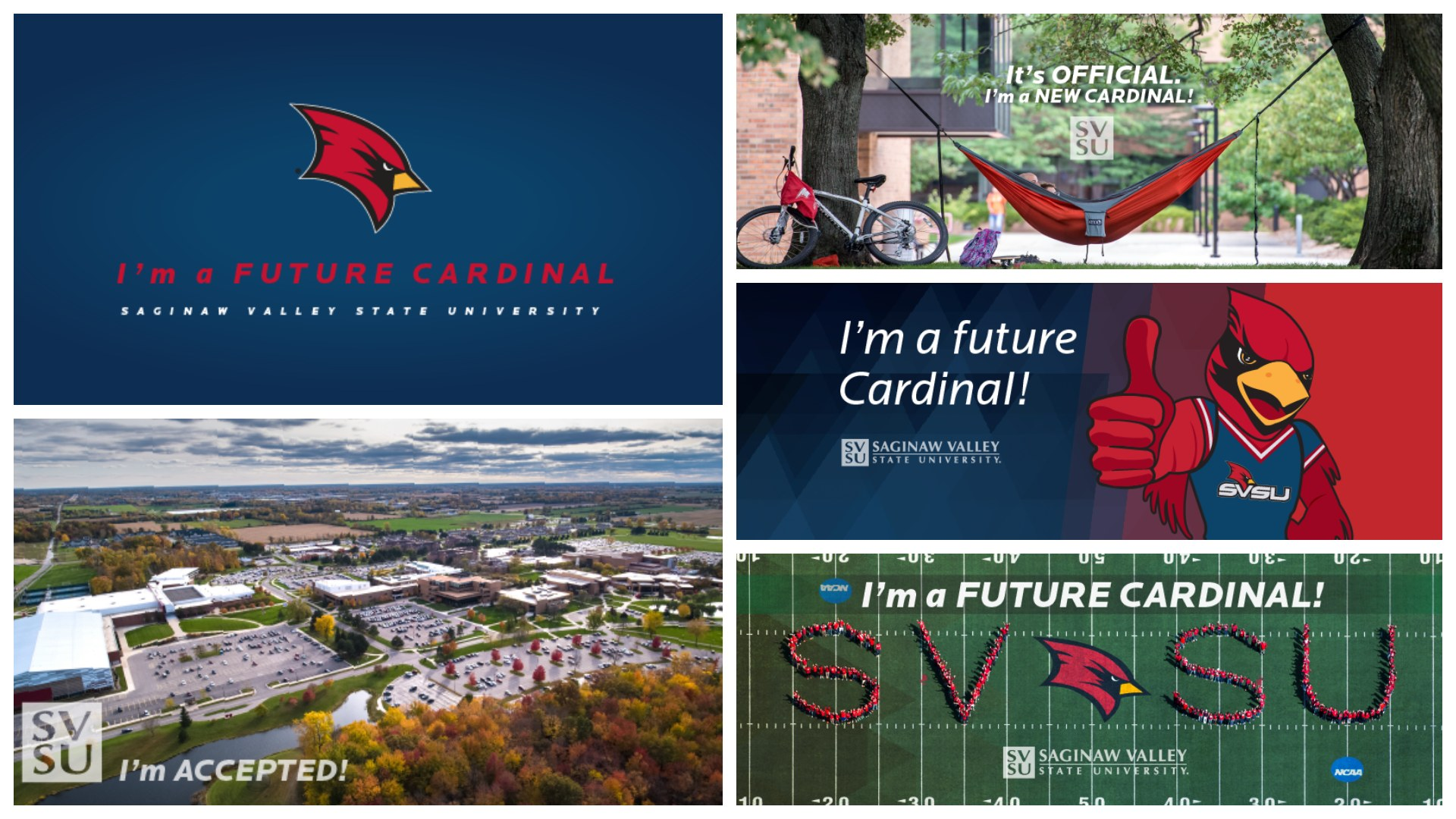 Examples of admitted student cover images for social media